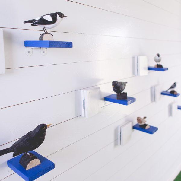 Bilde fra Fugleutstillingen på Lista Fyr